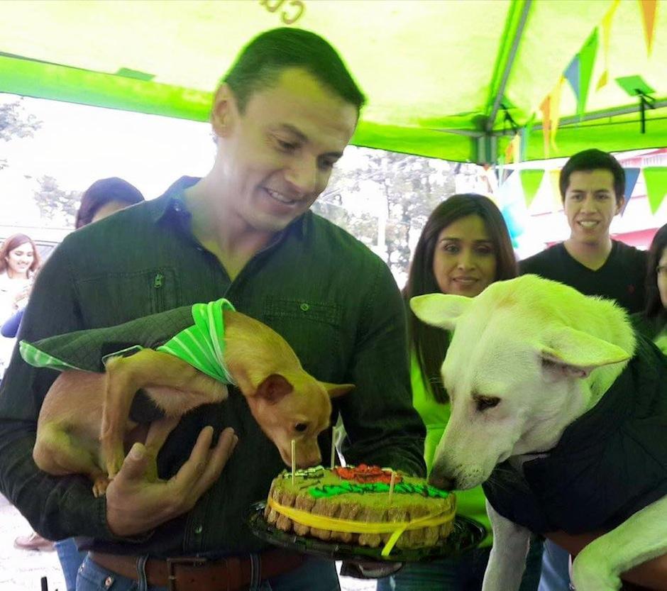 Taquito y su compañera China disfrutaron de pastel. (Foto: Albergue Municipal de Mascotas)