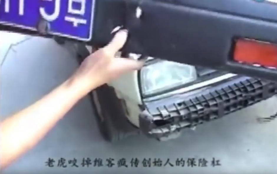 El tigre le abrió varios agujeros al parachoques. (Captura de pantalla: WorldHottestNews/YouTube)