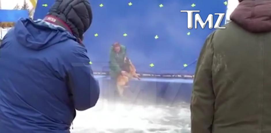 Peta posteó en una campaña que divertir a todos para una película no era el propósito de un perro. (Foto: TMZ)
