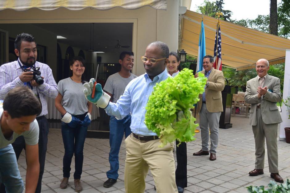 Robinson mostró sus cultivos de lechuga escarola. (Foto: Jesús Alfonso/Soy502)