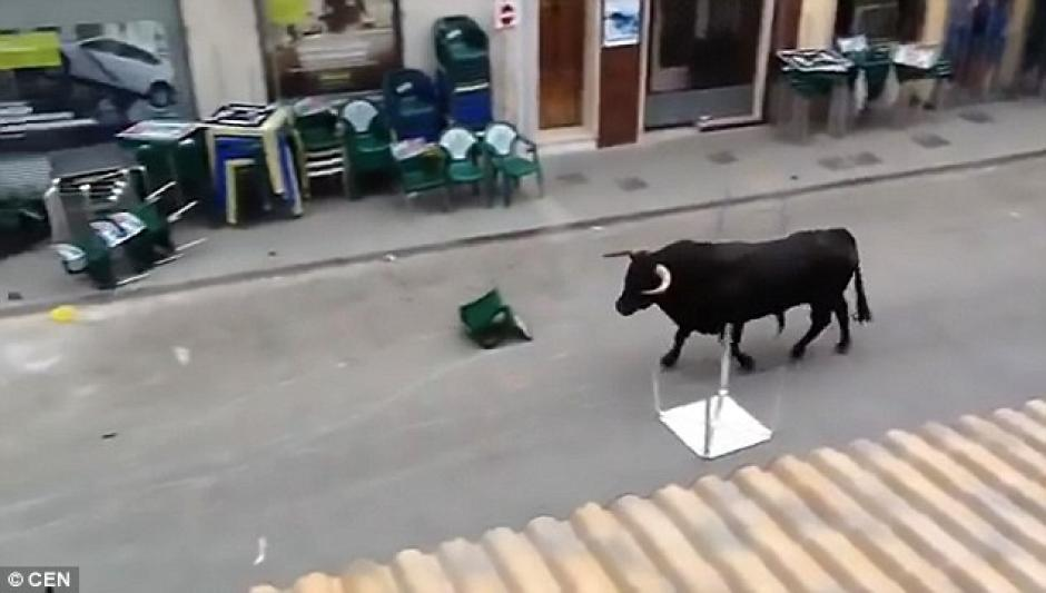 Un toro en Valencia, España hizo una parada en un banco antes de continuar con su recorrido. (Foto: Daily Mail)