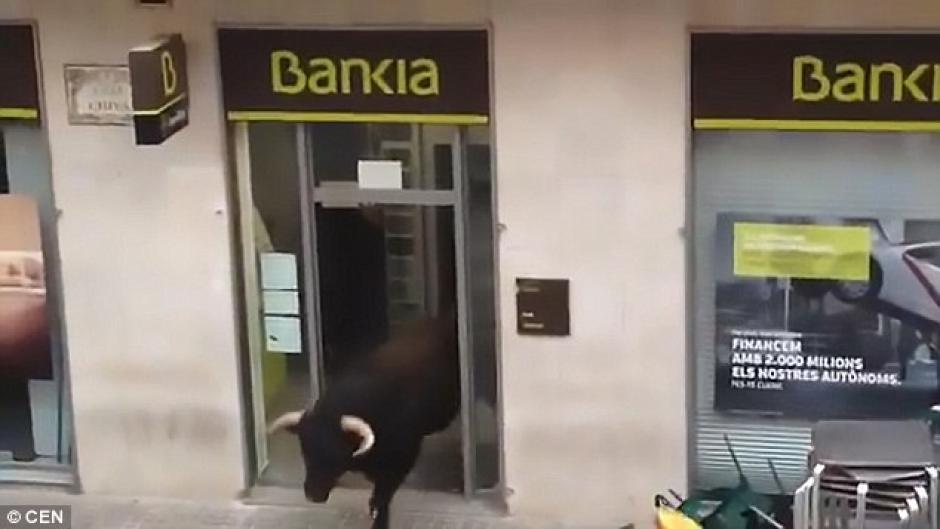 Luego de asustar a unos cuantos usuarios del banco el toro regresó a la calle. (Foto: Daily Mail)