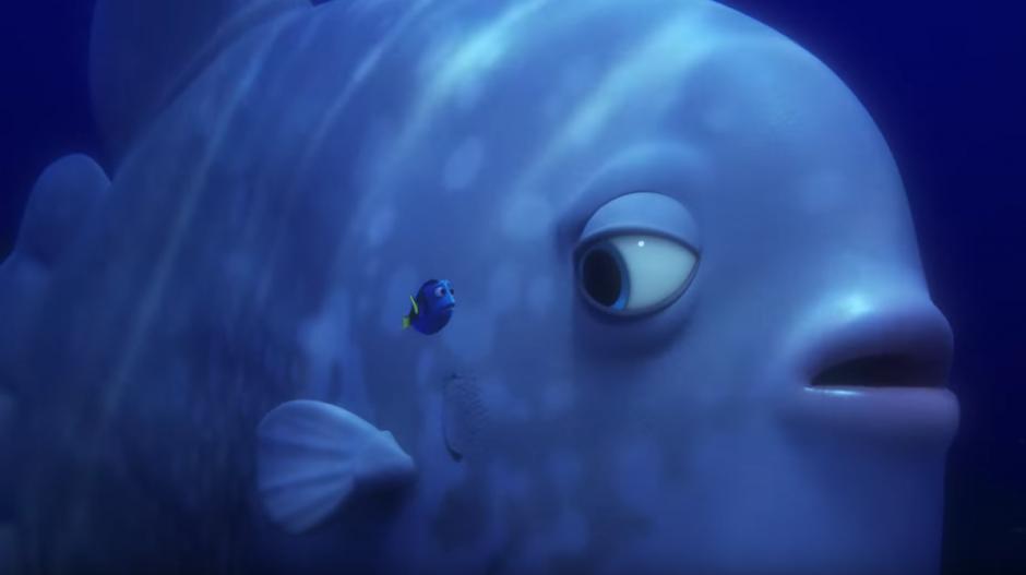 Nuevos peces ayudan a Dory en su búsqueda. (Captura de pantalla: TheEllenShow/Youtube)