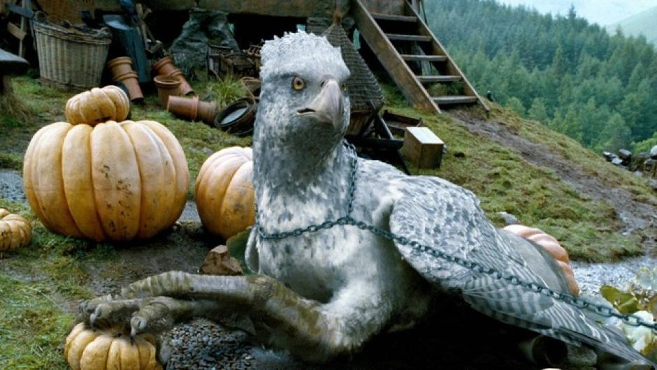 Buckbeak es el hipogrifo que apareció en Harry Potter y el Prisionero de Azkaban. (Foto: tumblr.com)
