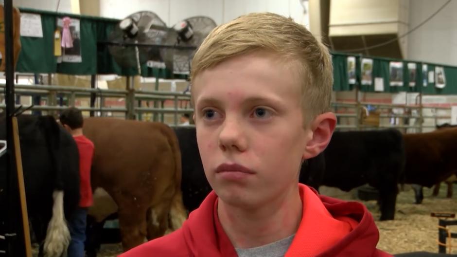 En las primeras imágenes se ve al fondo a un niño molestando a unas vacas. (Foto: YouTube)