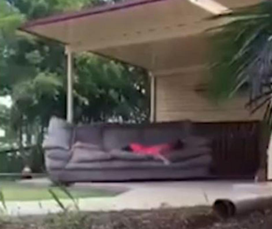 Aún dormida, el novio empezó a jalar el sofá.