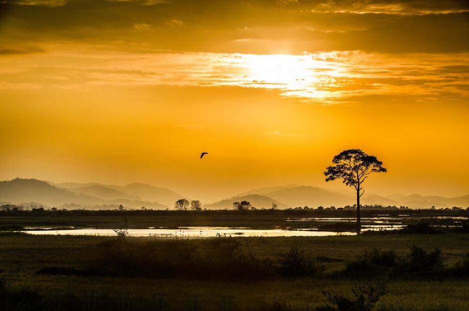 Un ave cruza por el cielo y al fondo se observa las Tierras Altas del Centro de Vietnam.(Foto: Réhahn)