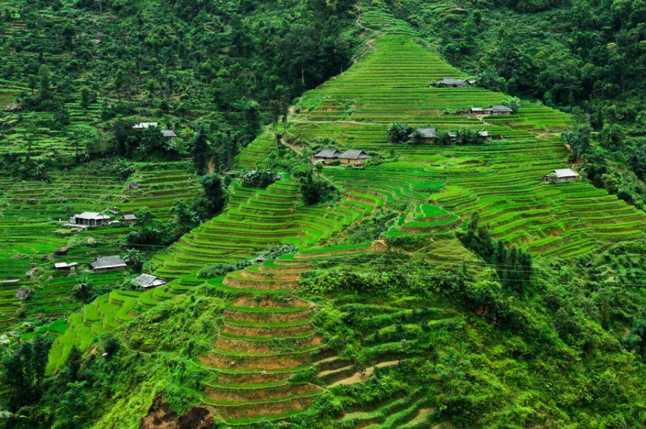 Una peculiar vista de las gradas en las montañas de Hoang Su Phi. (Foto: Réhahn)
