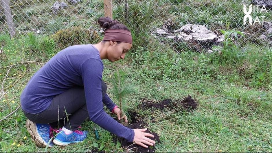 El sábado 11 de junio se realizó un proyecto de reforestación organizado por Go Extreme. (Foto: Facebook, Vitanat)