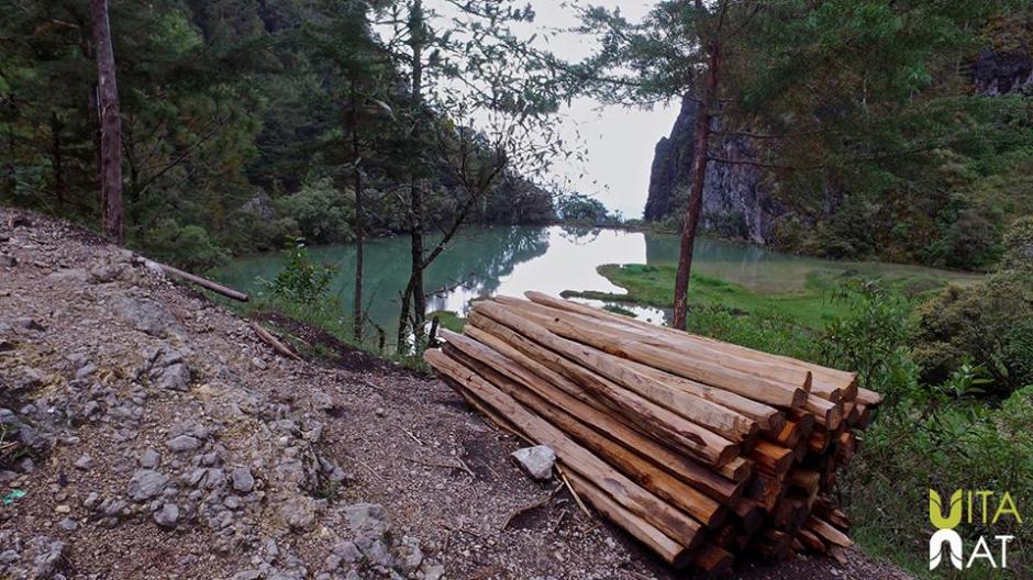 La tala de árboles no permite la conservación de la Laguna Magdalena. (Foto: Facebook, Vitanat)