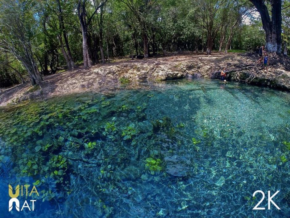 Vita nat comparte información acerca de ecoturismo y naturaleza. (Foto: VitaNat)