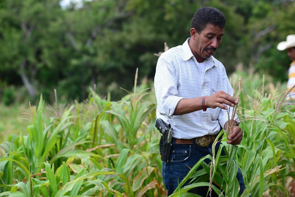 Preocupa que no haya un plan de contingencia ante la sequía. (Foto: Archivo/Soy502)