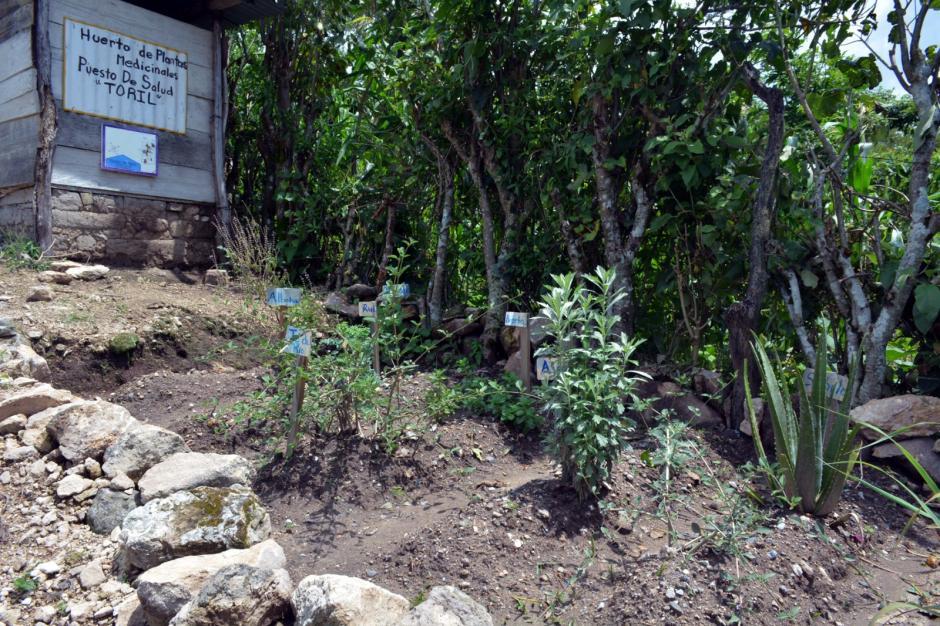 Los puestos de salud con el MIS cuentan con un huerto. (Foto: MSPAS)