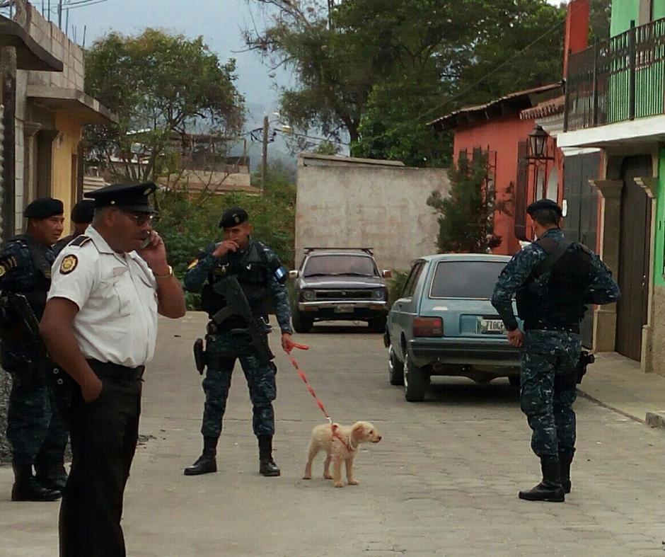 El perrito fue cuidado por los agentes mientras se realizaba el allanamiento. (Foto: Pablo Solís/Nuestro Diario)