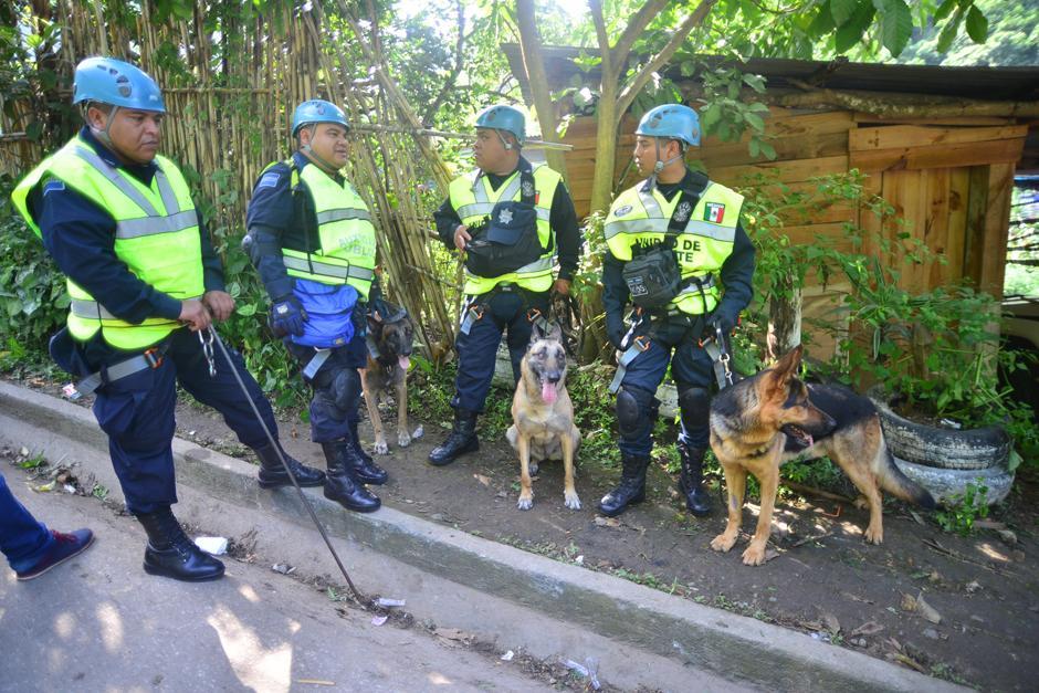 Socorristas mexicanos acompañados de 16 perros expertos en la búsqueda y localización de víctimas, se unieron este día al rescate de la víctimas.(Foto: Alejandro Balan/Soy502)