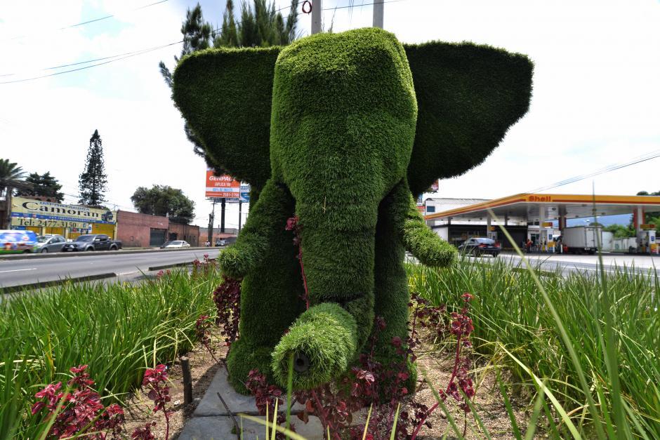 El elefante mide 2.50 metros de alto y 3 de largo. (Foto: Wilder López/Soy502)