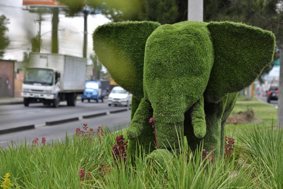El elefante llama la atención de cientos de guatemaltecos que transitan por la calzada Raúl Aguilar Batres. (Foto: Wilder López/Soy502)