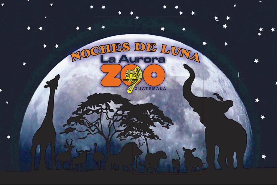 El horario en las Noches de Luna en el Zoo es de 6 a 10 P.M. (Foto: Facebook)