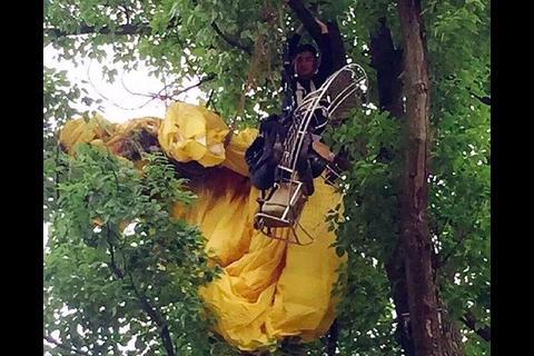 Pide matrimonio en paracaídas, se enreda en un árbol y le dicen: ¡No!