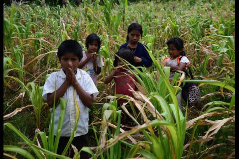 Mientras los corruptos se deleitan, los niños mueren de hambre
