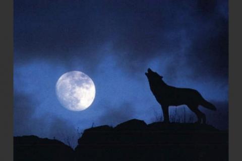 En 2018 habrá cuatro eclipses solares y dos lunares ¿Podrás verlos?