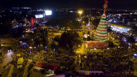 Se encendió el show navideño del Árbol Gallo