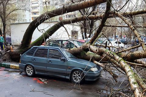 Poderosa tormenta causa muerte de niña y deja varios heridos en Moscú