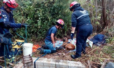 Así rescataron al perro que cayó a un pozo en Quiché