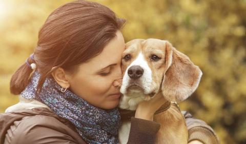 Cómo decir adiós a tu mascota de una forma digna