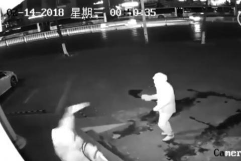 Los peores ladrones del mundo: el robo terminó por un ladrillazo