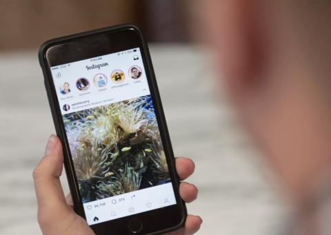 ¿Por qué eliminaron los GIFs de Instagram y Snapchat?