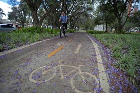 A pedalazo por la ciudad: construirán 40 km más de ciclovías