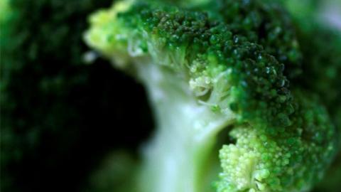 Médico revela las razones por las que se debe comer más brócoli