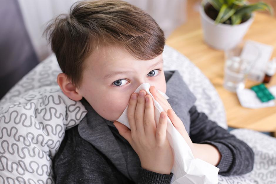 Según científicos, el consumo de fibra podría proteger de la gripe