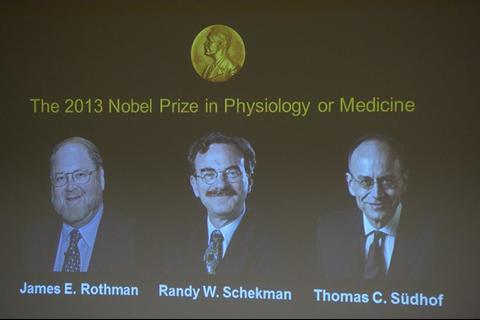 Descubridores del tráfico celular ganan el Nobel de Medicina 2013