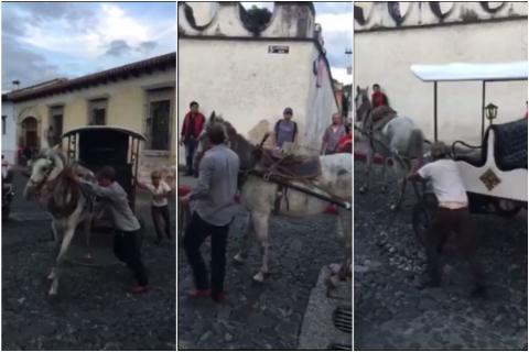 Una yegua cansada se niega a halar un carruaje en Antigua Guatemala