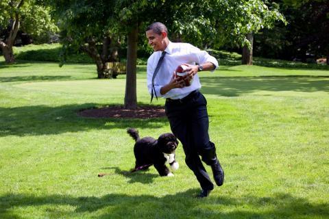 Obama y sus perros se contagiaron de la fiebre del Super Bowl