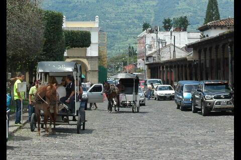Caballos en la Antigua Guatemala: ¿tradición o maltrato animal?