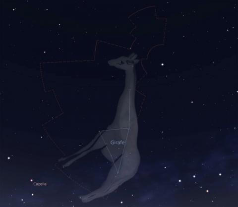 Alerta por nueva lluvia de meteoros en la constelación de la Jirafa