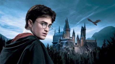 Si eres fanático de Harry Potter, esto te va a interesar