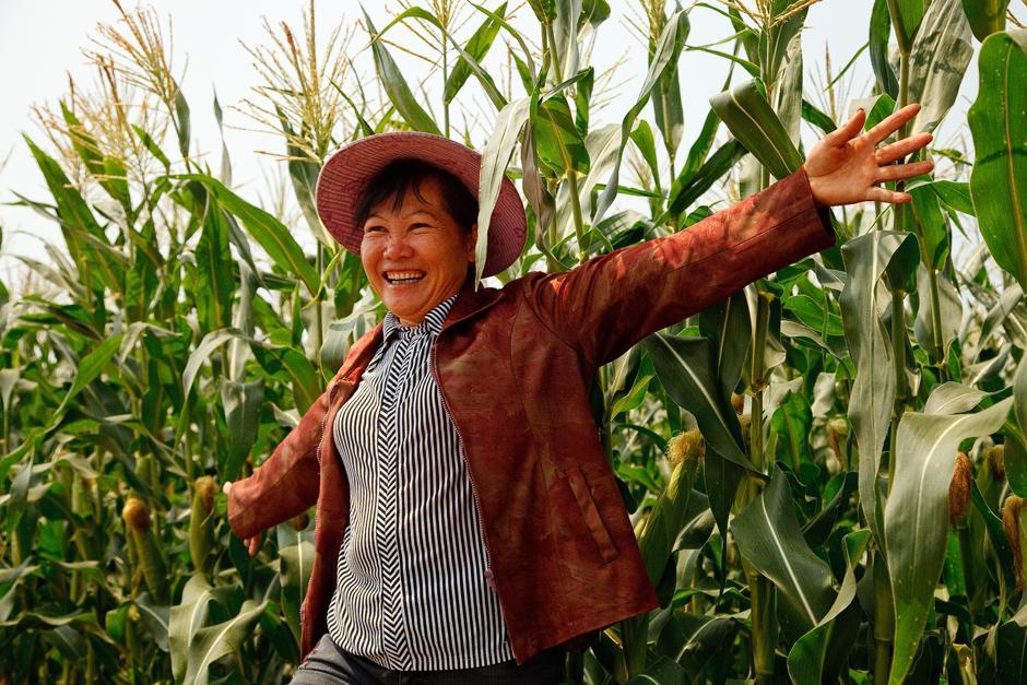 Los precios del maíz son fuertemente impulsados por compras chinas