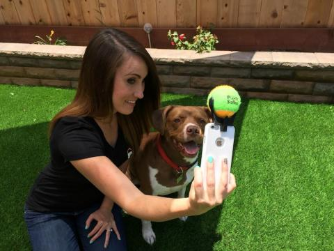 "La ""selfie"" perfecta junto a tu perro ya es posible"
