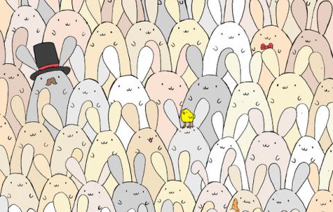 Nuevo reto visual: encuentra el huevo escondido en un grupo de conejos