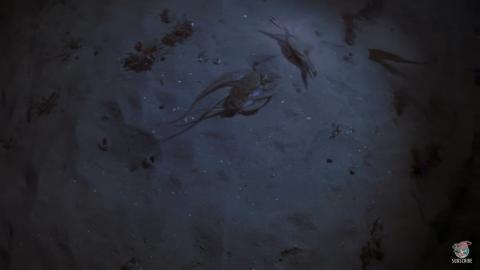 El inesperado final de la pelea entre un cangrejo y un pulpo