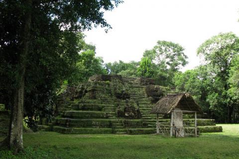 Uaxactún, en la lista mundial de monumentos en peligro de deterioro
