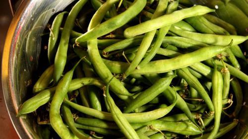 Cinco razones para incluir ejotes en tu dieta