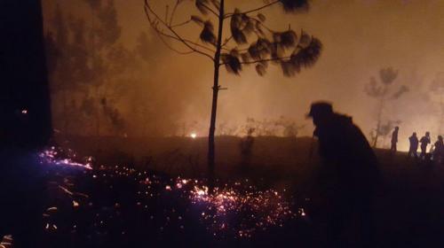 Incendios forestales, las emergencias más cubiertas en Semana Santa