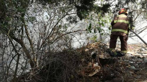 Bomberos tratan de sofocar incendio en Cementerio General