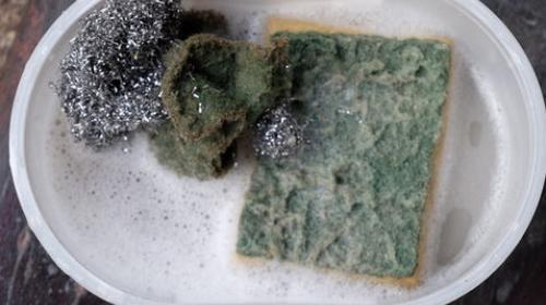 La asquerosa verdad que esconden las esponjas para lavar platos