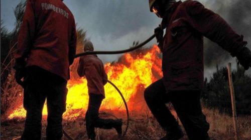 19 muertos y varios heridos deja un incendio forestal en Portugal
